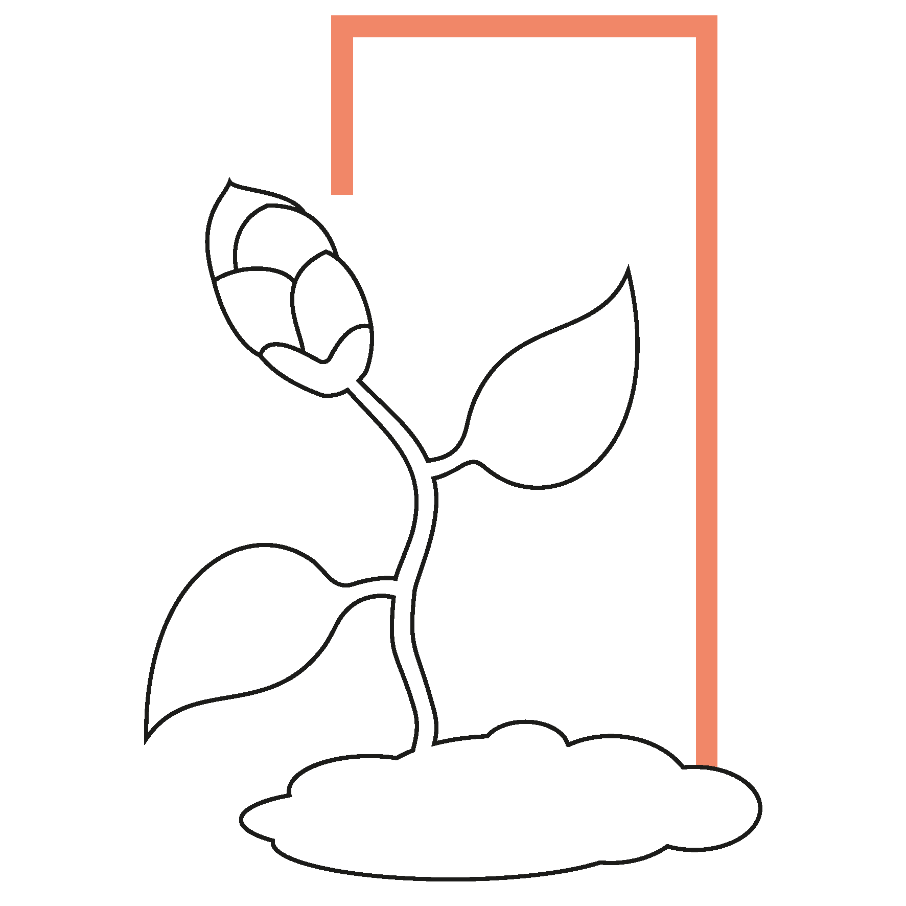 studio incubator pictogram of a bud growing in a frame growth branding positioning