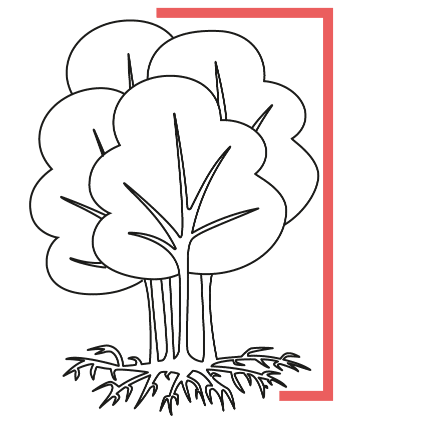 Icon of a forest with strong roots in a frame representing SME small medium enterprise business growth branding positioning