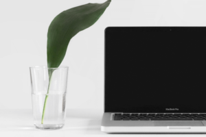 Could your website be more eco-friendly?